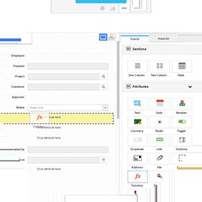 simple custom field editor